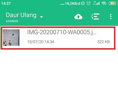 aplikasi mengembalikan foto yang terhapus